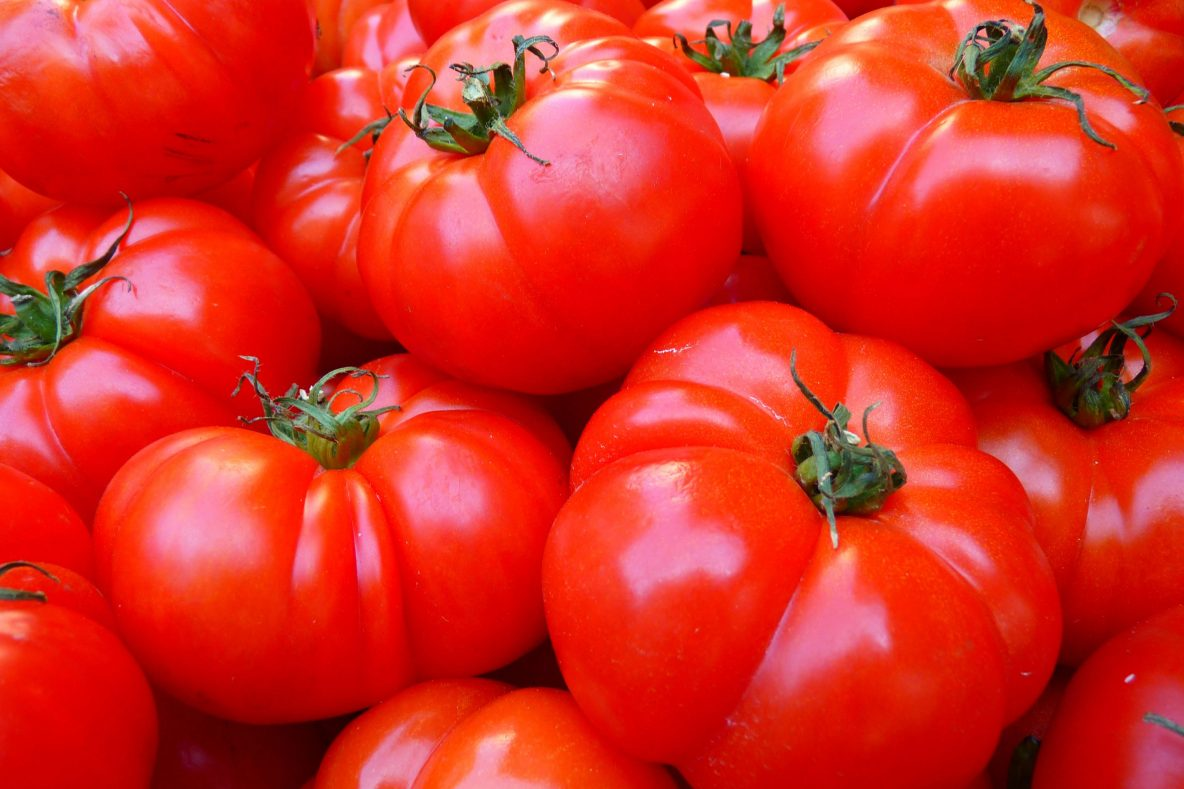Onive Consulting | Succes Factoren